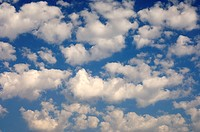 Sky partially covered with cumulus clouds, Okavango Delta, Botswana