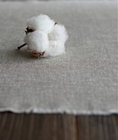 Cotton Plant on Fabric