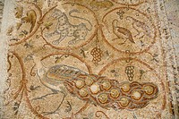 Photograph of a mosaic floor in the ancient synagogue of Ma´on Nirim in the western Negev