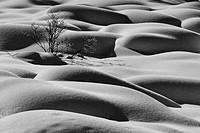 Close_up of snow mounds, Jasper National Park, Alberta, Canada