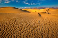 Sand dunes in a desert, Mesquite Flat Dunes, Death Valley National Park, California, USA