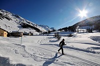 Cross_country skiing in Val Fex, Sils, Engadin, Grisons, Switzerland