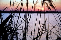 Lake country in sunset, Reeuwijkse Plassen, South_Holland, The Netherlands