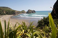 Piha Beach, Auckland Province, North Island, Tasmanian Sea, New Zealand
