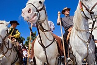 Gardians horsemen that works with bull of Camargue Procession during annual gipsy pilgrimage at Les Saintes Maries de la Mer may,Camargue, Bouches du ...
