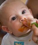 baby eats carrot mash