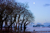 Full moon above winter landscape, Aberdeenshire, Scotland