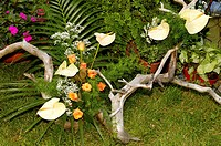 Artistic Landscape_gardening