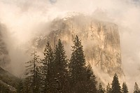 El Capitan is partially obscured by clouds in Yosemite Valley.