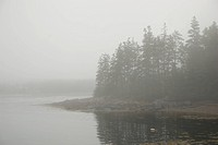 Mist sits on the water off a Maine island.