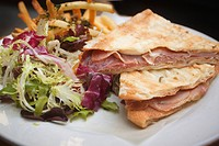 Proscuitto and mozarella panini with side salad