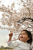 Close_up of a baby girl looking at Cherry blossom tree