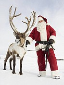 Santa Claus standing with his reindeer