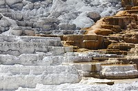 Detail of travertine terraces at Mammoth Hot Springs, Yellowstone National Park, Wyoming, USA