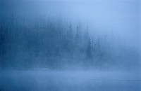 Morning mist rises off a lake in Algonquin Park in central Ontario.