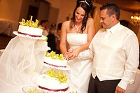 bridal couple cutting wedding cake