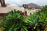 El Patio agriculture museum, Tiagua, Lanzarote, Las Palmas, Canary Islands, Spain
