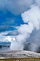 'Old Faithful' Geyser, Yellowstone National Park