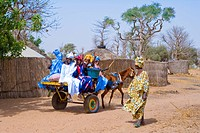 Senegal _ Sin Saloum region _ Going to a wedding