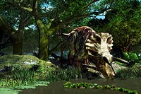 Triceratops drinking at a pond, artwork. This was a common dinosaur in the late Cretaceous period, from around 70 million years ago until the extincti...