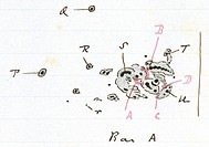 Carrington´s flare. Diagram of the solar flare and associated sunspot group observed by Richard Carrington on 1st September 1859. The flare caused a l...