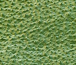 Lotus leaf surface. Coloured scanning electron micrograph SEM showing the microstructures on the surface of a leaf from a lotus Nelumbo sp. plant. The...