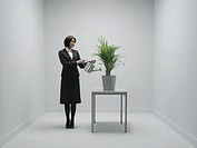 Office environment. Conceptual image of company growth due to a healthy office environment.
