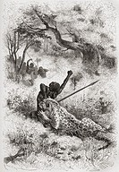 A leopard attacking an African native in the 19th century  From El Mundo en la Mano published 1878