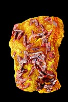 Realgar AsS - Arsenic sulfide red on orpiment As2S3 Arsenic tri sulfide -yellow - Palomo mine - Huancavelica department - Peru - Both are ores of arse...