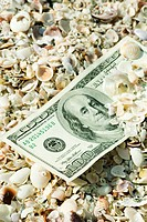 One_hundred dollar bill half buried in seashells