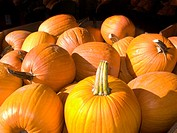 High angle photo of a box of pumpkins