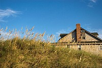Dune grass in front of beach house in Kill Devil Hills, NC, USA