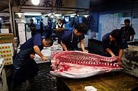 Japan, Tokyo, Takashi Saïto, sushi master, buying fishes at Tsujiki market preparing a tuna.
