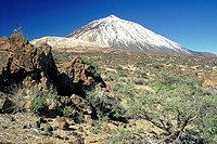 Teide  Tenerife  Canary islands