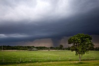 A severe thunderstorm in rural Nebraska, May 24, 2010  A rainshaft is at right, mimicking a tornado, rainshafts such as this are often called in to th...