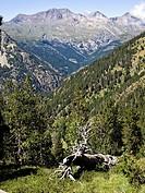 Puco Culfreda o Batoua y Valle de Tabernés - Gistaín - Sobrarbe - Huesca - Pirineo Aragonés - Aragón - España