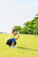 Young Boy Blowing Soap Bubbles in Park