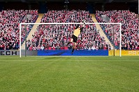 Goalkeeper saving a goal