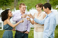 People toasting wine glasses