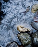 Ice on stone ...