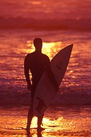 Surfer watching ocean sunset, San Diego, California, USA                                                                                              ...