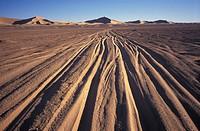 Algeria, Sahara. Erg Chech Desert