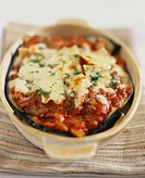 Italian food, lasagne with meat source