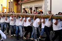 Fiesta de la Blanca Village men shoulder the bonfire to plant in the town plaza Nueva de Llanes Asturias