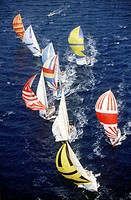 Sailboats under spinnaker in sail race