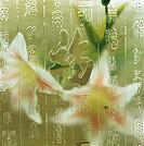 Fu,Chinese script