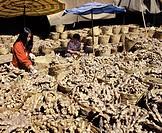 Thailand, ginger market stall