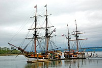 USA, California, Eureka, tall ships