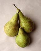 Three pears arranged in a still life composition on a textured,linen-like background