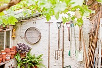 Tools hanging on wall of garden shed (thumbnail)